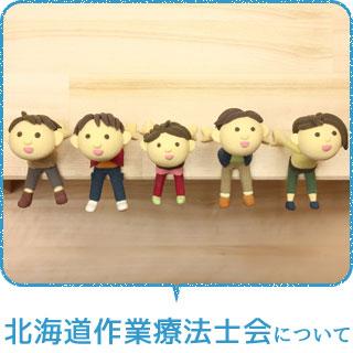 北海道作業療法士会について
